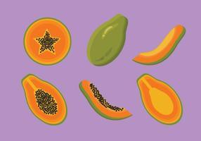 Vecteur de papaye