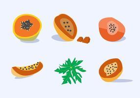 Vecteur de fruits à la papaye
