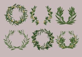 Vecteurs de couronnes d'olivier au laurier vecteur