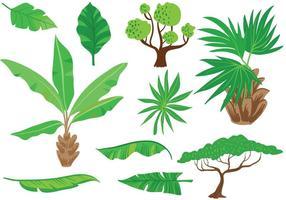 Vecteurs exotiques exotiques de végétation