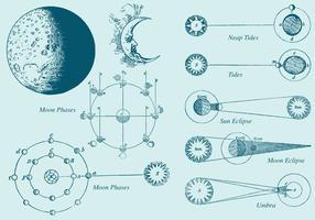 Vecteurs de phase de lune à dessin de style ancien vecteur