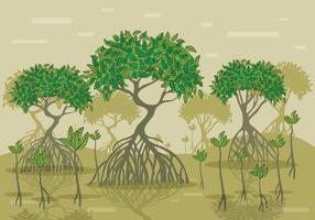 Forêt de vecteur de mangrove