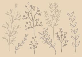 Branches d'encre vectorielle vecteur
