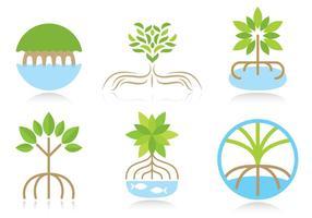 Vecteurs de logo de mangrove vecteur