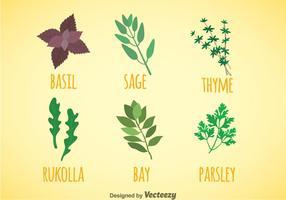 Vecteur d'icônes de couleurs d'herbes et d'épices