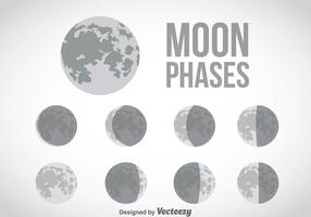 Moon Phase Grey Icons Vector