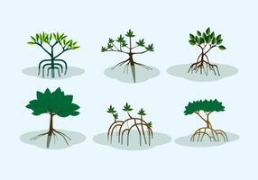Vecteur de arbustes de mangrove