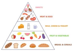 Vecteur pyramide alimentaire gratuit