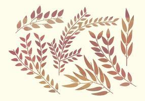 Branches de vecteur aquarelle