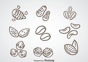 Vecteur de collection de noix