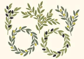 Éléments d'olives vectoriels vecteur