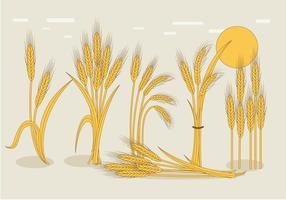 Vecteur de tige de blé