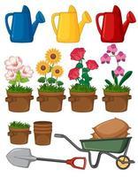 fleurs et outils de jardinage vecteur