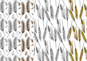 Ensemble de motifs de tige de blé vecteur
