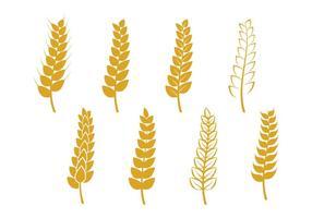 Icône de tige de blé vecteur