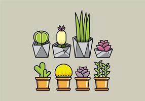 Planteuses succulentes vectorielles vecteur