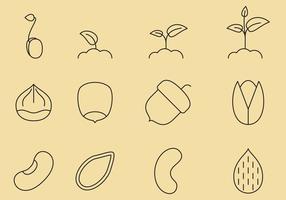 Icônes de ligne de graines vecteur