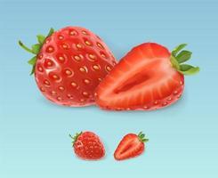 fraise fraîche réaliste avec des feuilles vecteur