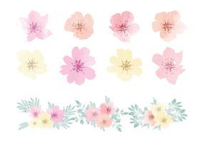 Aquarelle vectorielle Éléments de fleurs hawaïennes vecteur