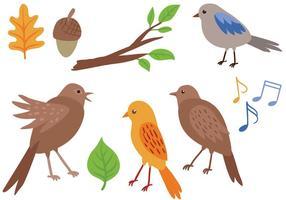 Vecteurs libres d'oiseaux chanteurs vecteur