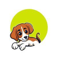 portrait de chiot beagle vecteur