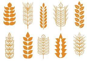 Vecteurs de tiges de blé libre