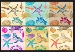 Patterns de plage vecteur