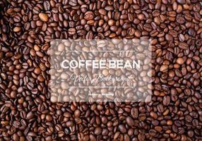 Texture de fond de grains de café vecteur