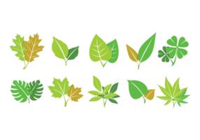 Collection vert des feuilles vecteur