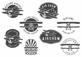 Ensemble d'insignes de biplan