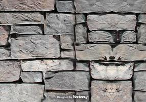 Texture vectorielle du mur de pierre