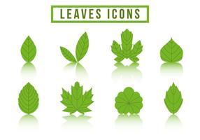 Collection gratuite Logo du logo Hojas vecteur