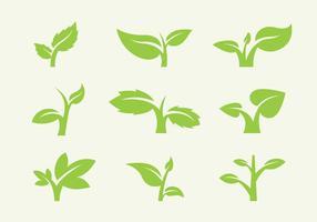 Vecteurs d'icônes de feuilles vecteur