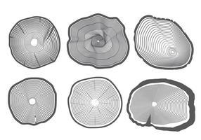 Vector d'anneaux d'arbres
