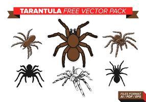 Paquet vectoriel gratuit de tarentules