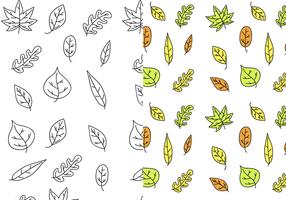 Vecteur de feuilles libres