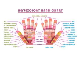 Carte vectorielle de réflexologie vecteur