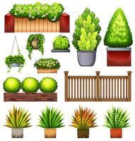 ensemble de diverses plantes et clôtures vecteur