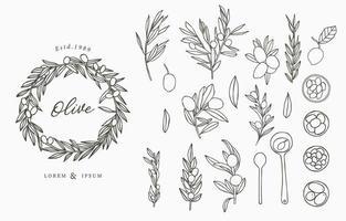 ensemble de fines lignes olive vecteur