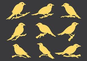 Vecteur d'icônes de silhouette de Nightingale
