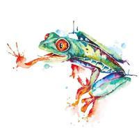 conception aquarelle grenouille verte vecteur