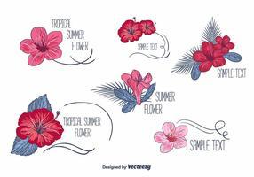 Vecteurs d'étiquettes florales