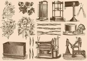 Processus de coton vecteur
