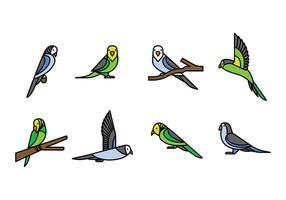 Budgie Vector Icons