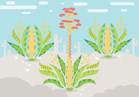 Vector d'illustration Maguey