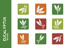 Vecteurs d'icônes libres d'eucalyptus vecteur