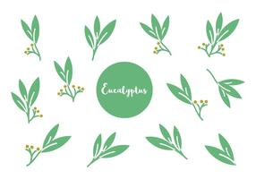 Vecteur gratuit d'icônes d'eucalyptus