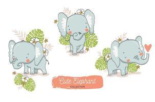 ensemble de bébés éléphants avec des éléments floraux tropicaux