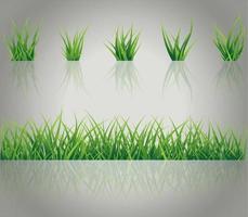 ensemble d'herbe réaliste