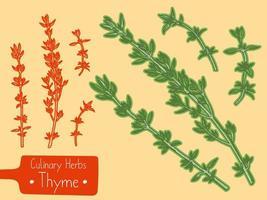 branches de thym aux herbes culinaires